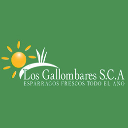 logo Los Gallombares - Sabor Granada