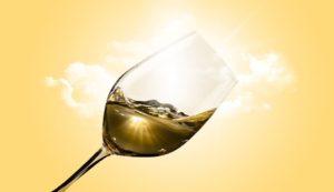 Vino producido en Granada - Sabor Granada