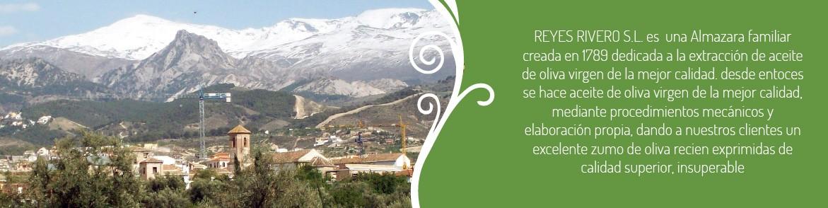 Reyes Rivero - Sabor Granada