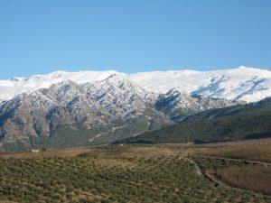 Vista aérea de la Almazara guaryat dillar con Sierra Nevada al fondo - Sabo Granada