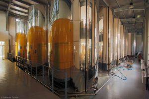 Aceite en máquinas de la Almazara Campopineda - Sabor Granada