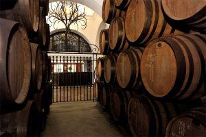 Interior de las bodegas de Ron Montero - Sabor Granada
