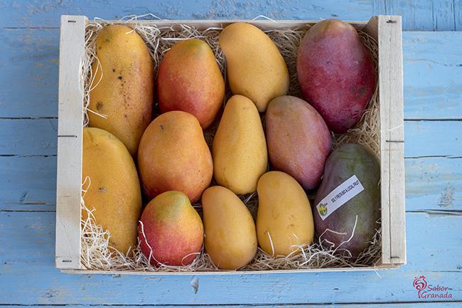 Mangos Sol y Fruit - Sabor Granada