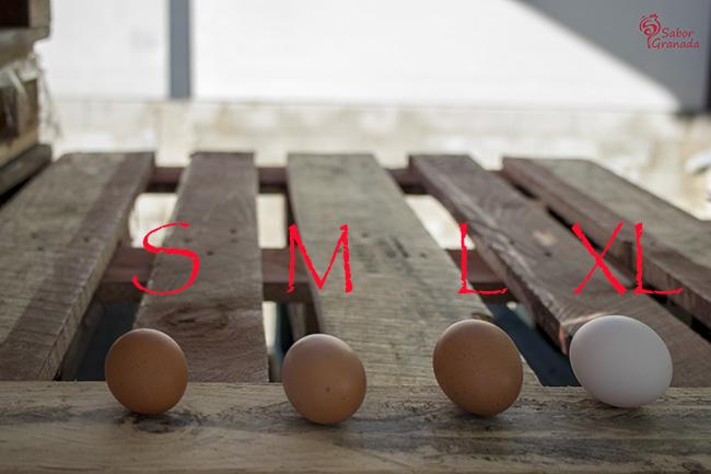 Huevos Garrido de distintos tamaños - Sabor Granada