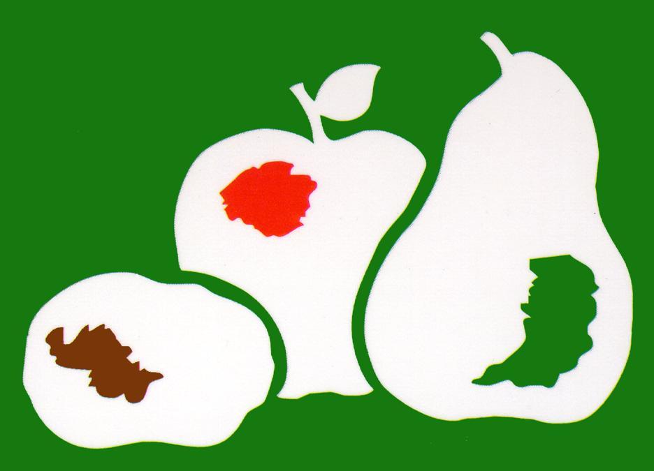 Logotipo Patatas Eduardo Sanz - Sabor Granada