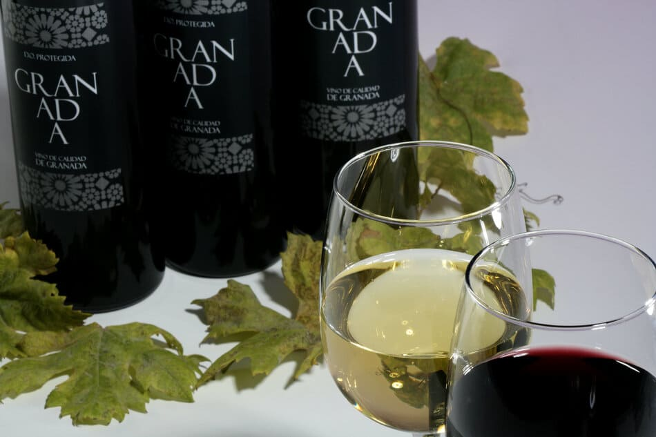 Vino tinto y blanco - Sabor Granada