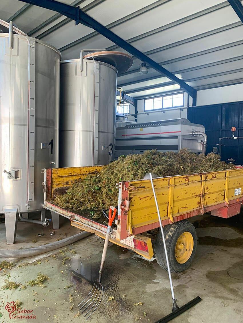 Carrillo y productos en Pago de Almaraes - Sabor Granada