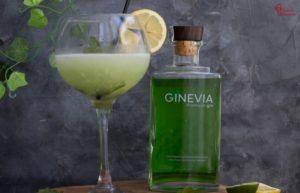 Presentación del sorbete con gin tonic - Sabor Granada