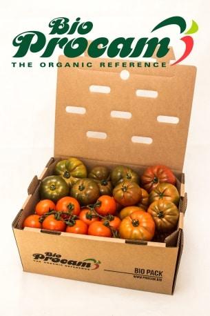 Caja de tomates Bio Procam - Sabor Granada