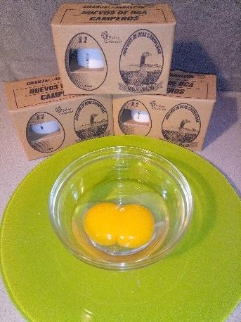 Huevos camperos de Granja de ocas Jabalcón - Sabor Granada