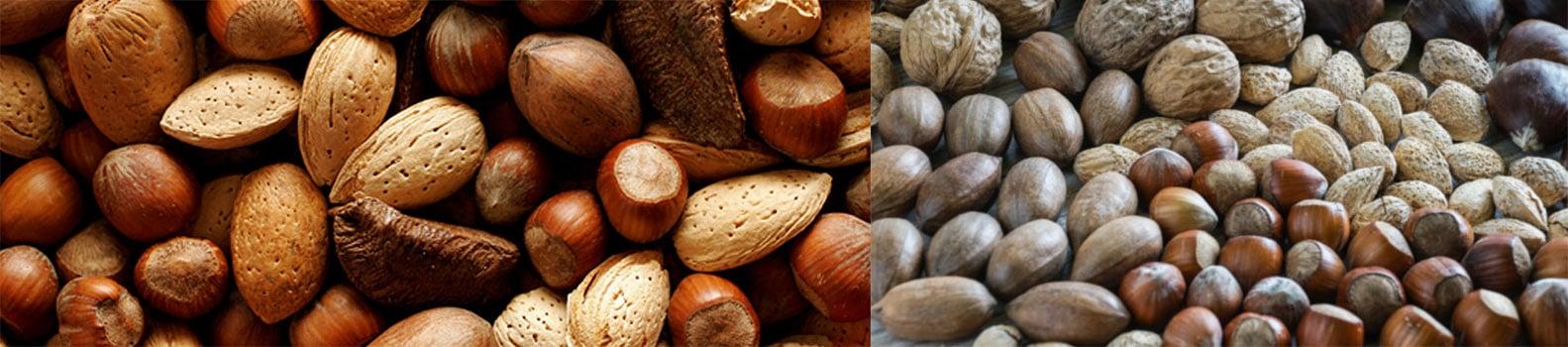 Banner con varios frutos secos de Eyma - Sabor Granada