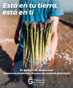 Banner de la campaña de productos frescos Sabor Granada con la imagen de espárragos